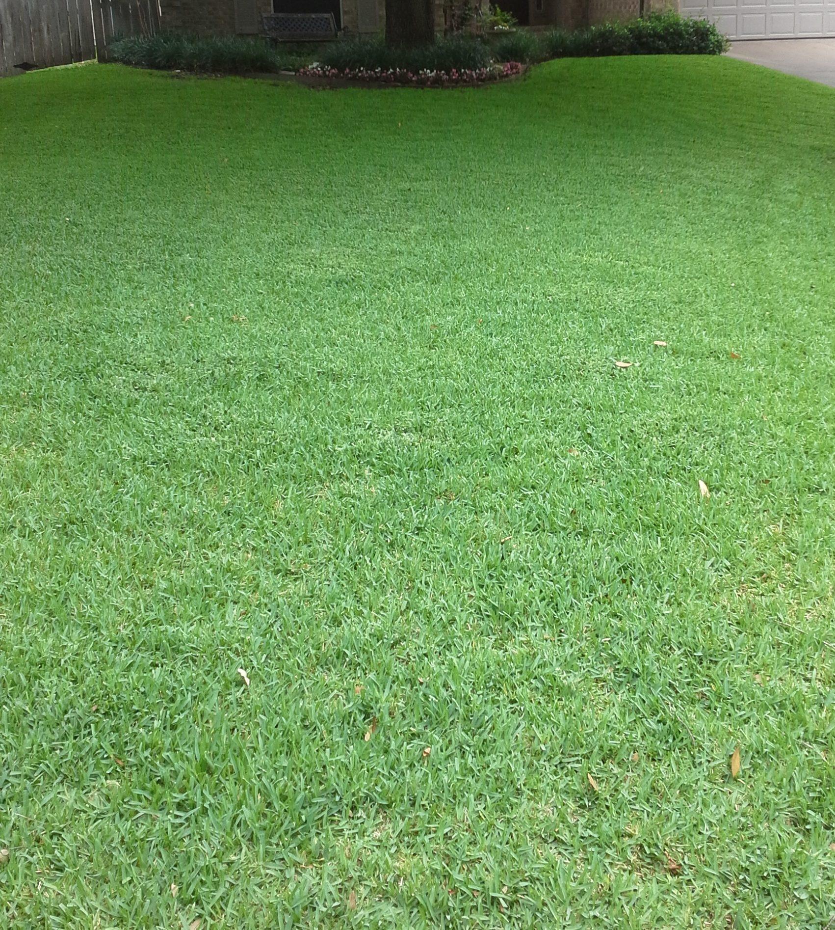 Flower Mound Lawn Care