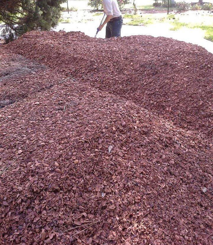 Pecan Shell Mulch