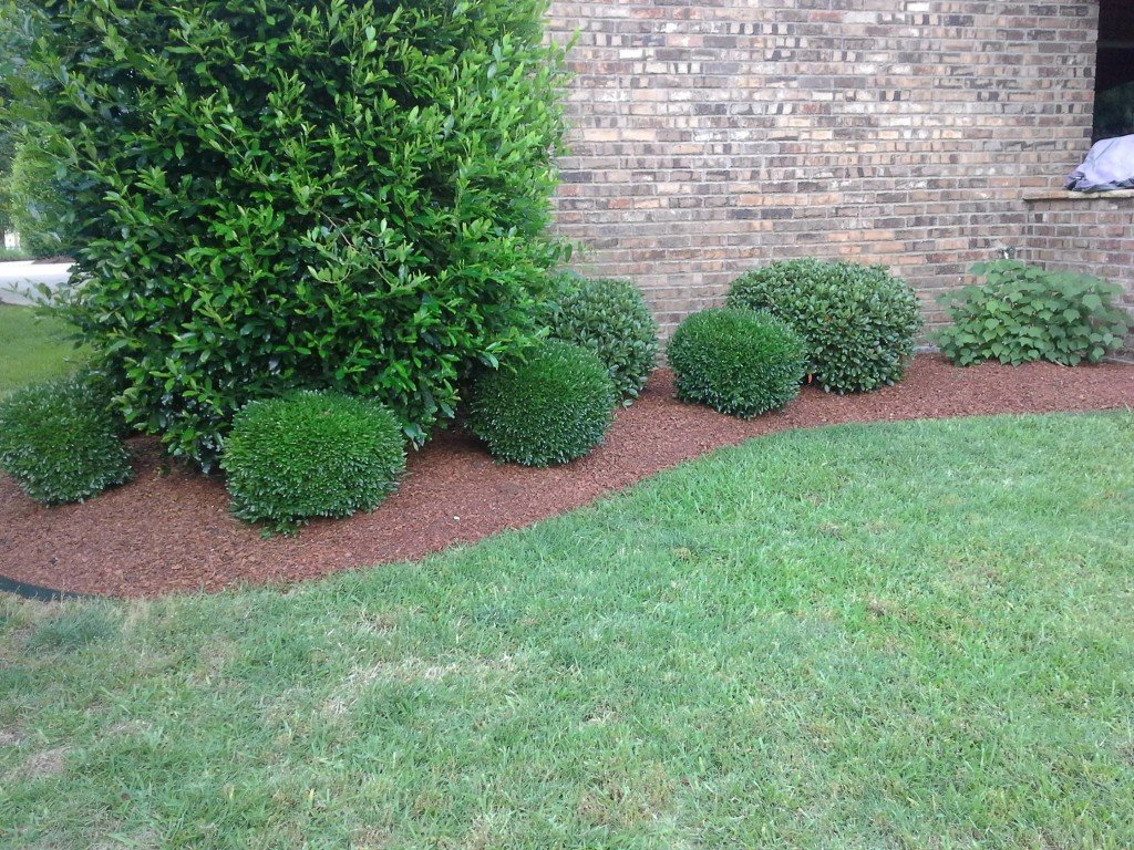 Mulch Hope Landscaping