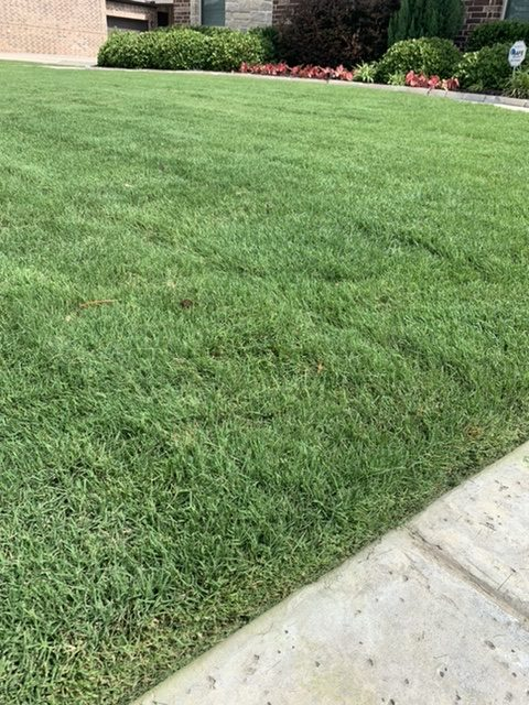 Flower Mound Lawn Service